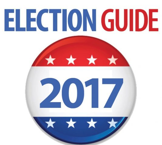 election guide art